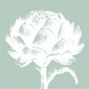 Profile picture for Artichoke Trust