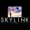 SKYLINK Pictures