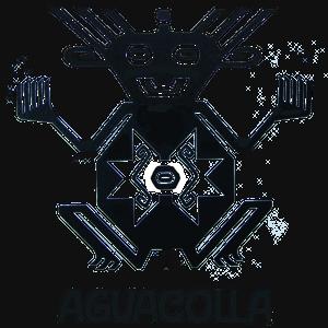 Profile picture for AGUACOLLA