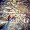 Averagesizedfly