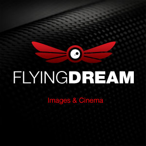 Profile picture for Flyingdream