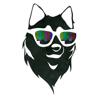 Husky Vision