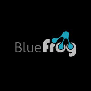 Profile picture for bluefrog studio