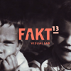 Fakt Visual Lab