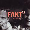 Fakt Visual Lab
