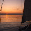Sail the Odyssey