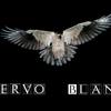 CUERVO BLANCO, PRODUCCIONES.