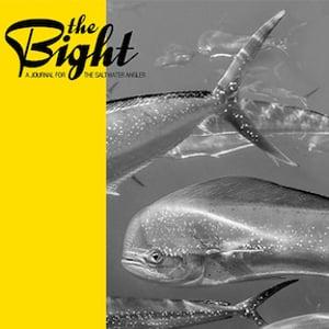 Profile picture for The Bight