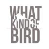 whatkindofbird