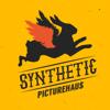 Synthetic PictureHaus