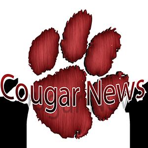 Image result for cougar news