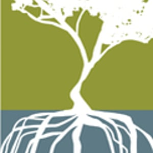 Profile picture for Mangrove Media
