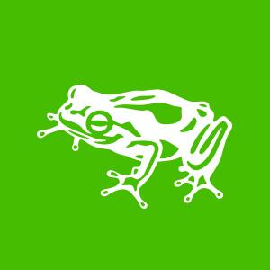 Frog On Vimeo
