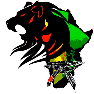 Profile picture for Lion Heart Initiative - Africa