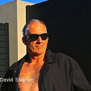 Profile picture for David Shipton