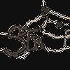Sophya Acosta// SEEM prod