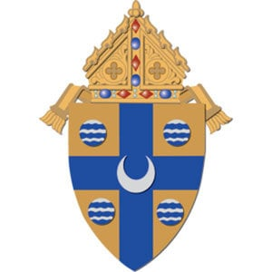 Profile picture for Diocese of Springfield in IL