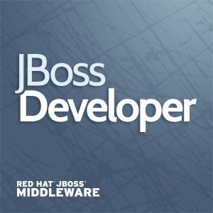 Profile picture for JBoss Developer
