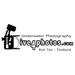 Profile picture for Dive4Photos