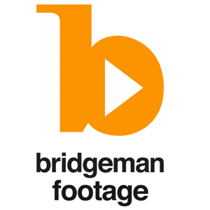 Profile picture for Bridgeman Footage