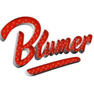 Profile picture for Blumer CPAs