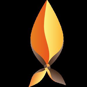 Profile picture for Mouvement  des Flambeaux