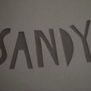 Profile picture for Sandy