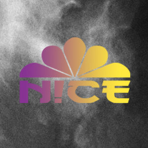 Profile picture for Nice Brand