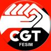 Cgt-Metal Fesim