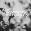 LUMINARE VIDEOGRAPHY