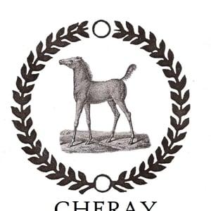 Profile picture for Equestrain Luxury