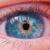 Apple in Eye Media