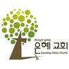 리노은혜교회