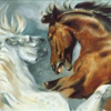 Actionhorse Blog