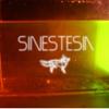sinestesia cholula