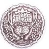 mybrainhumor.com