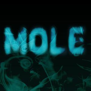 Profile picture for Mole