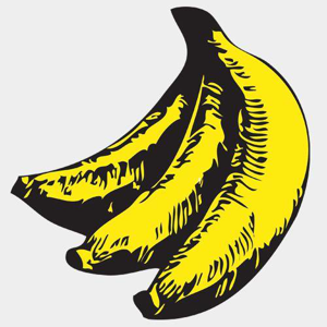 Profile picture for The Chimp Store