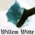 Willem Witte