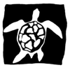 Pacific Black Box Inc