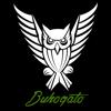 Buhogato - R2 Protect