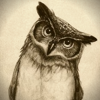 OwlVisiOn films