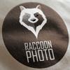 RaccoonFilm