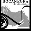 Bocanegra Producciones