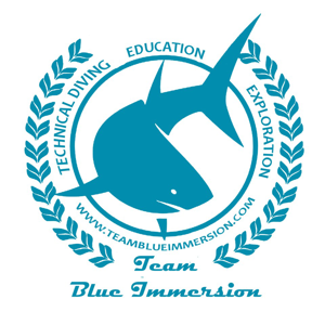 Profile picture for Team Blue Immersion