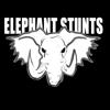 Mark Elefane / Elephant Stunts