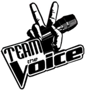 Profile picture for thevoicebr.com