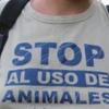 Respecte Animals