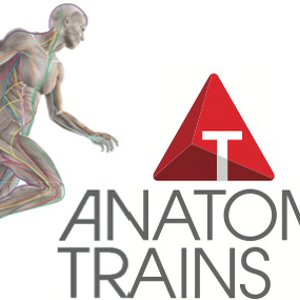 Profile picture for AnatomyTrains