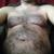 bearkool